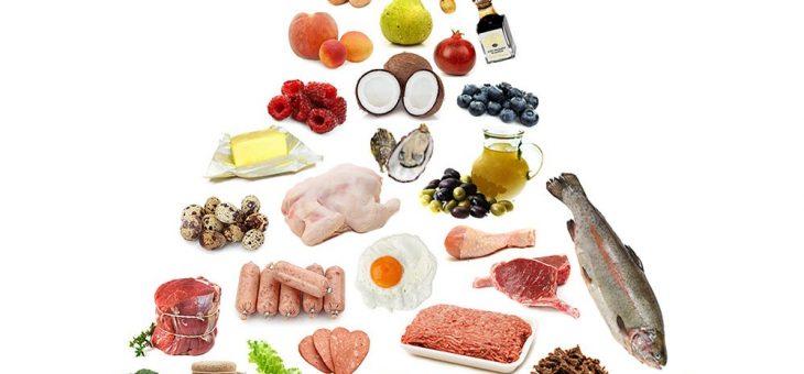 O que é dieta Paleolítica? O que é Low Carb?